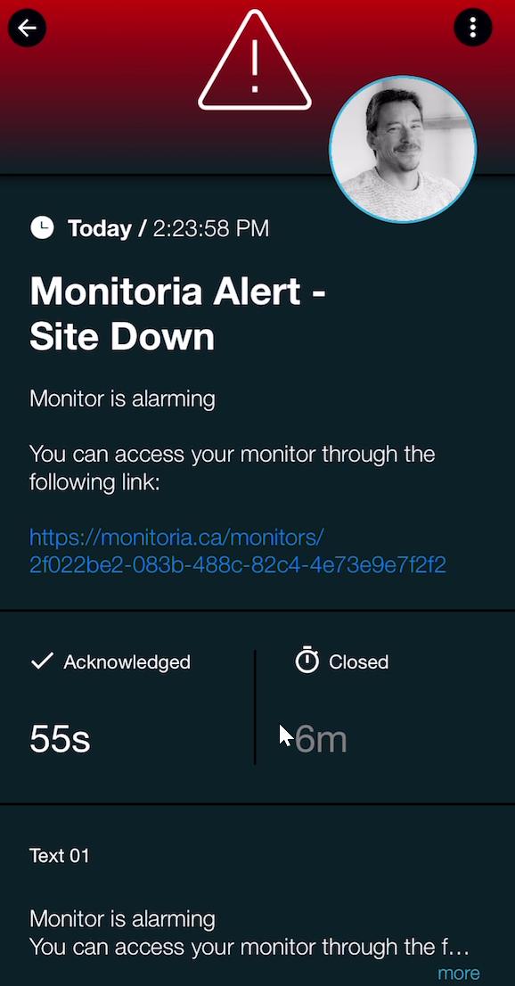 Monitoria_S41
